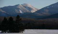 DSC_4718a (Fransois) Tags: mtcolden adirondacks adks ny mountainside champ field usa forest hiver winter arbres montagnes newyorkstate upstatenewyork