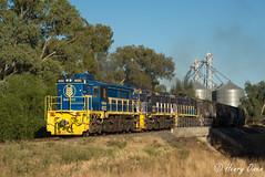 Boree Creek (Henry's Railway Gallery) Tags: 48203 48215 48218 48class alco diesel pacificnational pn graincorp freighttrain graintrain 3926 boreecreek