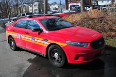 FDNY Car 33 (Triborough) Tags: ny nyc newyork newyorkcity richmondcounty statenisland woodrow fdny newyorkcityfiredepartment firetruck fireengine dutymedicalofficer car car33 ford taurus policeinterceptor