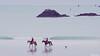 Côte d'èmeraude : balade sur la plage (guyju) Tags: france bretagne britanny mer marées eau ciel sable côtedémeraude saintbriac saintlunaire petitchien chien cheval