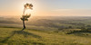 Pegsdon Hill (aMemoryCaptured) Tags: other desktop sunsetsunrise iop southeast photographic flikr places summer hitchin uk landscape