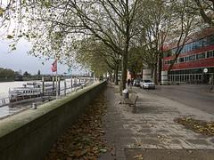 Bremen_e-m10_101A302465 (Torben*) Tags: leicadgsummilux12f14 olympusomdem10 rawtherapee bremen weser fluss river bank bench ufer promenade