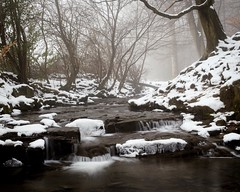 A foggy Judy Woods (Bashir Towers) Tags: moody scenic trees snow winter mist fog fujifilm fujixt1 outdoors countryside hiking yorkshire westyorkshire landscape waterfalls stream woodland woods judywoods