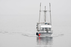 Monday's Child (observed.by.diane) Tags: negativespace boat grey sea dogwood2018 dogwood2018week11 dogwood52 water frenchcreekmarina mondayschild