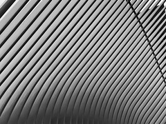 The Oculus (JMFusco) Tags: design oculus newyorkcity nyc wtc worldtradecenter manhattan blackandwhite monochrome iphone8plus iphone iphoneography