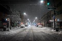 Spring Snowstorm (kriegs) Tags: bayridge blizzard brooklyn nyc snowstorm sonya7 2870mm nature weather