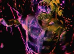 VHS Still from Elliot the movie by Craig Jacobson (16 of 37) (cassandra sechler) Tags: artist bayarea cameraoperator cassandrasechler conceptualartist craigjacobson craigrjacobson craigrobertjacobson ddcp ddcpllc director diyfilm diyfilmmaker diytutorial dreamsfordeadcats dreamsfordeadcatsproductions dreamsfordeadcatsproductionsllc elliot elliotthemovie existential filmstill filmmaker horror hotography indiefilm indiefilmmaker photographer photography sanfrancisco sanfranciscoartist sanfranciscobased scifi sfartist vhs vhsstill video videoartist support indie film movie still indiehorror cyber