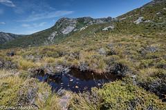 nr. Wombat Pool (Stewart M) Tags: 2018 australia cradlemountain tasmania