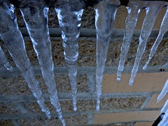 When icicles hang by the wall (violetchicken977) Tags: ice icicles stilllife