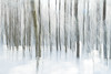 Flou hivernal (Gisou68Fr) Tags: bois woods forêt forest neige hiver winter snow arbres trees icm intentionalcameramovement flou flouintentionnel canoneos650d