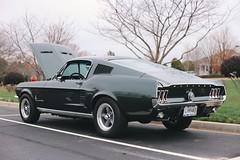 1967 Ford Mustang 390 GT Fastback (dmesser92) Tags: carsandcoffee carscoffee carsandcoffeeoftheupstate carscoffeeoftheupstate carshow carmeet car truck automotive ford mustang bullitt 390 gt v8 fordmustang highlandgreen 1967 vsco