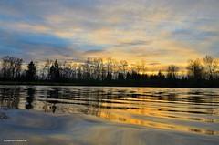 Sunset on the water (JSB PHOTOGRAPHS) Tags: dsc005300001 sunset eugeneoregon nikon 1755mm 28 trees autzenstadium pond water d7000 h altonbakerpark