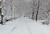 second day of spring (vladobgd) Tags: belgrade spring snow sneg prolece