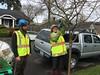 IMG_0223 (Urban Forestry) Tags: woodlawn tree treeteam prune pruning