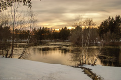 Melody Lake_3529 (smack53) Tags: smack53 melodylake westmilford newjersey water lake pond palpond reflections snow trees sunset clouds cloudy winter wintertime winterseason winterscenery nikon d100 nikond100