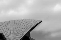 _RJS6923 (rjsnyc2) Tags: 2018 australia beach bondibeach day nikon nikond850 ocean richardsilver richardsilverphoto richardsilverphotography sydney sydneybridge sydneyoperahouse travel travelphotographer travelphotography travelphotographywinter city sun sunrise