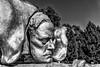 Helsinki; Sibelius Monument (drasphotography) Tags: helsinki finland travel travelphotography reise reisefotografie drasphotography sibelius monument monochrome monochromatic blackandwhite bw schwarzweis denkmal bianconero metal
