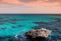 Master of the Rock (Yarin Asanth) Tags: gerdkozikfotografie yarinasanthphotography baleares mallorca rock bird blue sea ocean view horizon sky orange water islands