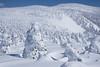 Snow Monster (bamboo_sasa) Tags: 西吾妻山 裏磐梯 吾妻連峰 福島 会津若松 北塩原村 猪苗代 樹氷 スノーモンスター スノーシュー グランデコ 東北 日本 冬 雪 山 登山 mtnishiazuma urabandai mountain aizuwakamatsu kitashiobara inawashiro snow monster tohoku japan winter snowmonster white