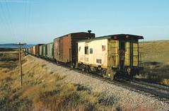 CNW 11125 near Oral, SD December 18, 1991 (blupenny99) Tags: cnw chicagonorthwesternrr trains railroads southdakota caboose blackhills