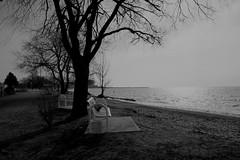 break (Farhan Tamim) Tags: nature isolation winter relaxation