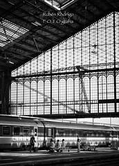 A quai (Mister Blur) Tags: train station gare paris austerlitz quai platform andén sncf wetravel thelighttraveler happy monochrome monday blackandwhite bw blancoynegro snapseed 13 arrondisement rubén rodrigo fotografía nikon d7100 yann tiersen
