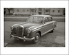 Vehicle Collection (8648) - Mercedes (Steve Given) Tags: familycar motorvehicle automobile mercedes