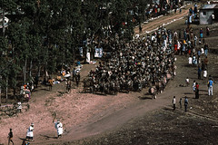 Start of the Shembe Festival, 1975 (NettyA) Tags: 1975 35mm africa ematabetuluvillage inanda kodachrome konicat3 shembefestival southafrica zulu zululand clothing costumes dancing people pilgrimage religious scannedslide slidefilm traditional