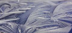 Arabesques (YPoireau) Tags: arabesque gel cristaux glace fractale hiver
