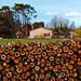 Wood bulwark