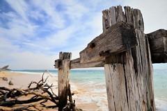 Point Nepean Victoria Australia (Barbiehg) Tags: pointnepean quarantine sea beach driftwood decay sky cloud canon canon6dm2 structure sand landscape victoria wood