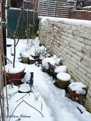 More snow! (karenblakeman) Tags: cavershamgarden caversham uk snow march reading berkshire plantpots gardenwall 2018