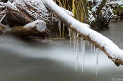 L'hiver n'en finit plus (Nu Mero) Tags: glace neige poselongue giessen nd64 riviere nature etang fleuve lac villé grandest france fr