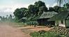 Dusty road, Malawi, 1975 (NettyA) Tags: 1975 35mm africa africanoverlandtrip kodachrome konicat3 malawi dust huts localpeople road scannedslide slidefilm