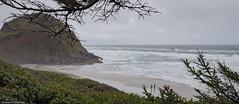 Ocean Beach #1 - Oregon (petechar) Tags: petechar charlesrpeterson landscape ocean lanecounty oregon highway101 water panasonicg9 leica1260mm ushighway101 sea coast