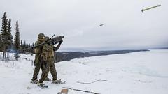 Arctic Edge 2018 (U.S. Army Alaska) Tags: arcticedge18 alaska usarak marines jber northernlights auroraborealis motivate marinecorprs training coldweather 2dlaad 2dmaw 2ndmarineairwing fortgreely unitedstates us