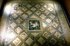MUSEO ARQUEOLOGICO DE MADRID ALCALA DE HENARES  7765 27-1-2018 MOSAICO ROMANO (Jose Javier Martin Espartosa) Tags: museoarqueologicoregionaldemadrid madrid alcaladehenares españa spain