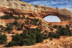 Wilson Arch (RiverBearPhoto) Tags: wilson arch utah