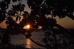 Night Comes to Ibo Island (The Spirit of the World ( On and Off)) Tags: sun sunset light evening night iboisland mozamique nature indianocean ocean seascape bougainvillea tropical foliage vegetation quirimbasarchipelago