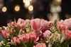 DSC01317 (ivoräber) Tags: bunch flowers pink