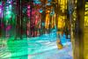 20180304-145 (sulamith.sallmann) Tags: landschaft wetter analogeffekt blur bunt bäume colorful effect effects effekt filter folie folientechnik forest landscape miriquidi natur nature schnee snow trees unscharf wald weather winter sulamithsallmann
