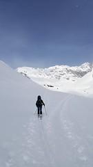 ascent to Breiter Grieskogel (formilock) Tags: winnebach winnebachseehütte stubai stubaieralpen gries breitergrieskogel alpen alps alpi austria alpes alpine alpinism berge bergsteigen schnee snow skitour schi schitour skibergsteigen montagnes mountains mountain montagne mountaineering tirol tyrol pbengelberg pbpolarbear