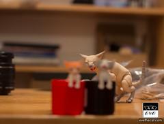 _MG_0052 (BJD Pets (dolls.evethecat.com)) Tags: bjd bjds bjdsale bjdforsale bjdoll bjddoll bjdlover bjdphoto bjdart dolls evestudiodolls artdoll dollart cat bjdpets kitty cute bjdcat