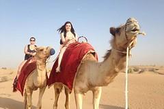 Desert Safari Dubai 70 AED WhatsApp +971552337784 www.tourtodubai.ae #DesertSafari #safari #Dubaisafari #safariadventure #reddunesafari #arabiansafari #eveningsafari #morningsafari #dunebashing #adventure #safaridubai #dubaiadventure . (dubai travels) Tags: desert safari dubai 70 aed whatsapp 971552337784 wwwtourtodubaiae desertsafari dubaisafari safariadventure reddunesafari arabiansafari eveningsafari morningsafari dunebashing adventure safaridubai dubaiadventure