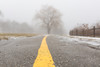 follow the yellow line (Marc McDermott) Tags: winter fog snow thaw tree path line fence ontario canada leading