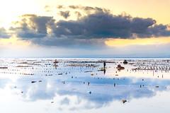 A mirror on the sea .. Miroir sur la mer Bali (geolis06) Tags: geolis06 bali 2015 asie asia indonésie indonésia nusalembongan olympusem5 olympus olympusm1240mmf28 mer sea balibeach nusalembonganbeach plagebali jungutbatu jungutbatubeach jungutbatuplagefishermenofseaweeds pêcheursdalgues sunrise sunset