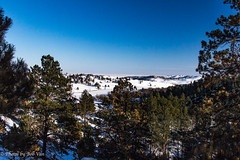 Custer Park 20180223-0025 (Photos By Bob Van) Tags: blackhills csp custerstatepark landscape snow southdakota winter custer unitedstates us