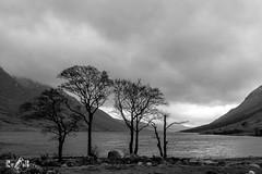 Loch Etive, Scotland (Renate van den Boom) Tags: 02febuari 2018 bergen boom europa glencoe grootbrittannië jaar landschap maand natuur renatevandenboom schotland stijltechniek zeeoceaan zwartwit