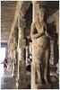 7676 - Thirumayam Temple (chandrasekaran a 50 lakhs views Thanks to all.) Tags: sathyagirisvarar சத்திய கிரீஸ்வரர் temples templeart architecture archaeologicalsurveyofindia thirumayam fort pudukottai tamilnadu india shrines ravana mount kailash rockcutcavetemples satyamurthi sivatemple vaishnavites canoneos6dmarkii tamronef28300mm sculpture gajasamharhamoorthi tower gopurams divyaprabhandham