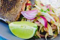 Saturday dinner. Sous vide salmon, fennel salad with dill and chive sour cream. (garydlum) Tags: limezest belconnen parsley fennelsalad limejuice redonion salmon sourcream dill fennel lime chives canberra redwinevinegar sousvide capitalhill australiancapitalterritory australia au